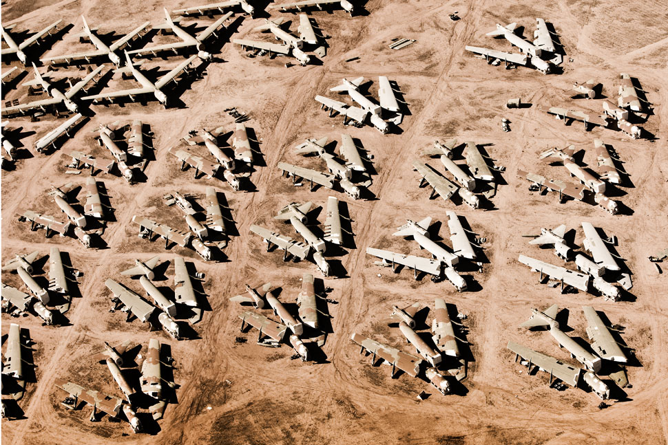 Desert Birds // From Above #7